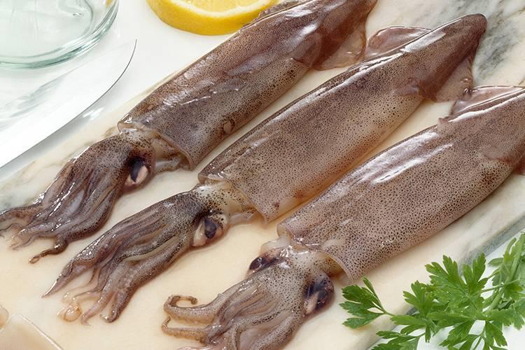 Plancha valor nutricional calamar
